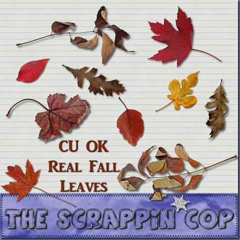 "Free ""Real Fall Leaves"" from The Scrappin Cop - {CU}"