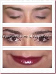 110511 - Diva Look