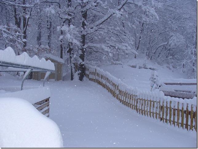 SNOW STORM FEB 6 2010 (15)