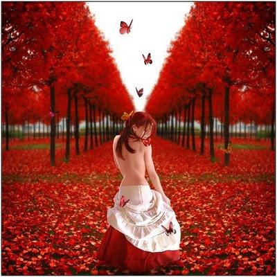 mulher,pétalas de rosas, borboletas, outono, árvores