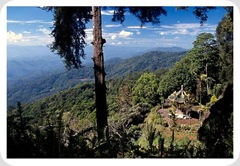 chiang_mai_hills