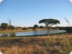 Botswana_nature