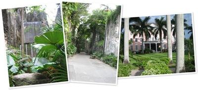 View geocaching in Nassau
