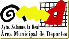 area municipal de deportes