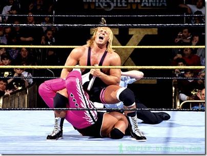 14 Bret Hart Owen Hart