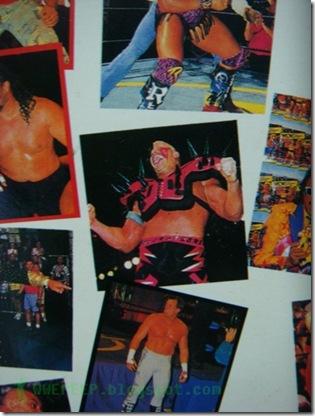 VDO VHS WWF WCW WWE 15