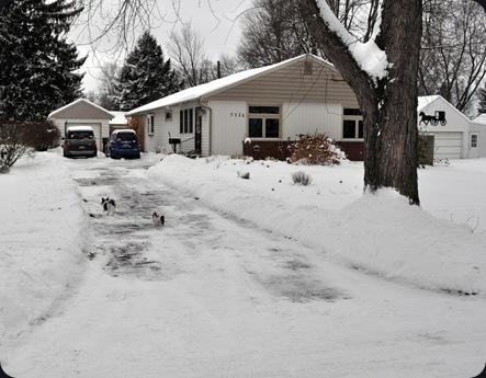 snow2011b