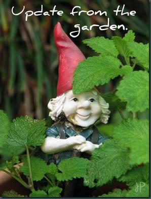 garden update1 wm