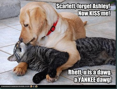 funny-pictures-cat-and-dog-kiss