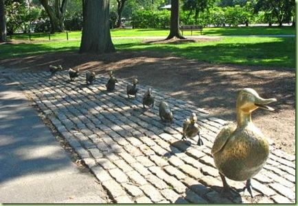 boston-public-garden-16