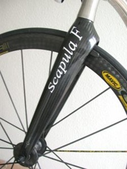 Scapula F ganz - 4940