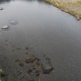 めっちゃ透明な熊野川