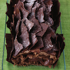 Chocolate Yule Log Recipe