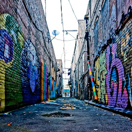 Alley Art by Barbara Brock - City,  Street & Park  Neighborhoods ( painting on the walls, urban art, graffiti, street art, alley )