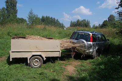 Перетаскиваем и перевозим камыш от озера. Сейчас им накрываем вагончик, чтобы не было жарко. Потом будем его использовать для самана.