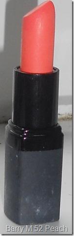 DSCN1318