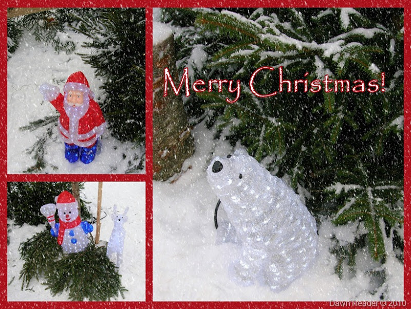 2010-12-6 Merry Christmas collage