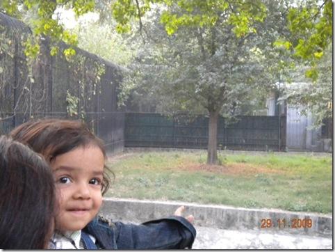 aaditya ranjan-11292009_0719 e
