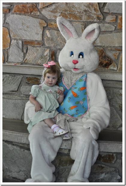 ec bunny