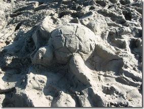 SandSculptureTurtle