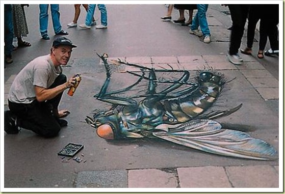 07-amazing-3d-sidewalk-art-dead-fly1