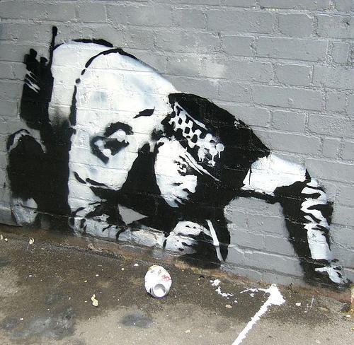 30 Stencil Graffiti Artworks that are worth seeing | Village Of Joy