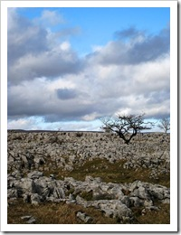 ingleborough_limestone