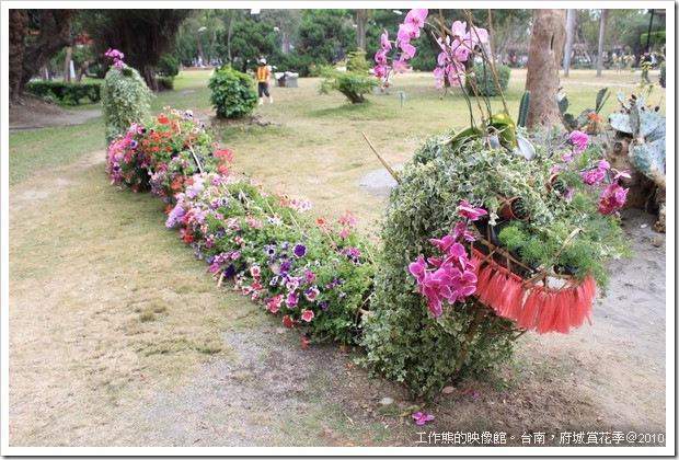 Tainan_Park_flower23
