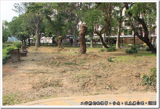 巴克禮紀念公園,我們去的時候剛好颱風剛過不久,有些樹木不堪強風攔腰折斷,殊為可惜!
