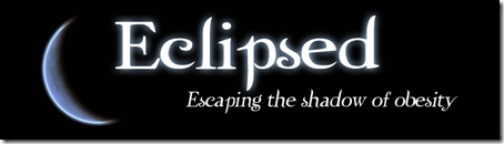 Eclipsed blog header