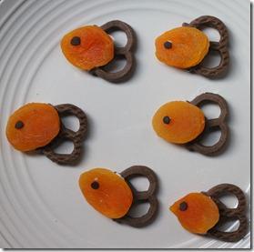 apricot pretzel fish