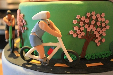 Triathlon Cake: Bike2