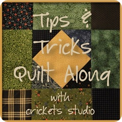tips & tricks button