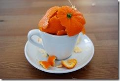 2009_01_09-OrangePeel
