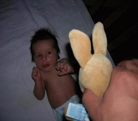 rabbitsarebad