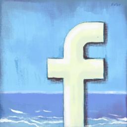 [facebook_256[3].png]
