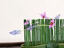 موسوعة رائعة من الورود Flowers-wallpaper%20%2817%29