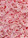 موسوعة رائعة من الورود Pattren%20%2821%29