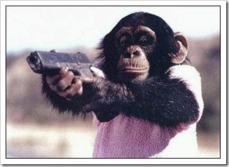 Mono amenazando