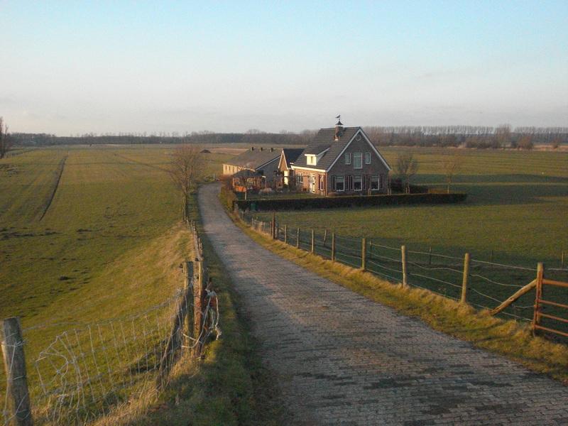 Distese di Natura incontaminata nel percorso Amsterdam Utrecht del Giro