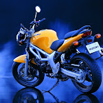 motorbikes_040.jpg
