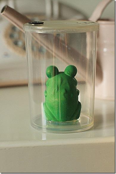 青蛙變王子-3