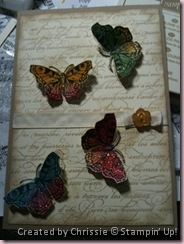 French Butterflies