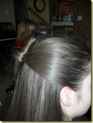 hair 012