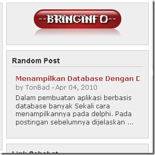 random post blog secara dinamis-www.bringinfo.co.cc