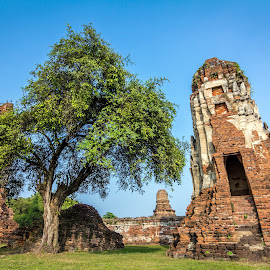 Historic City of Ayutthaya by Low YingTong - Buildings & Architecture Public & Historical ( building, kingdom, thailand, ayutthaya, architecture, historical, unesco )