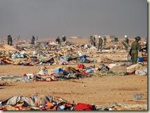 campamento saharaui 2
