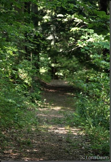 WNP_NatureTrail