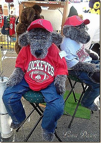 Buckeye_Bears
