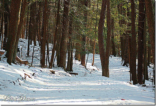 OMC_UpperTrail_Dec